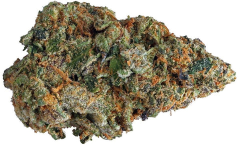 Gelato Weed - Everything you need to know and more!