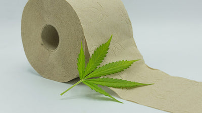 5 reason you need to try hemp toilet paper - no3 will leave you clean as a whistle