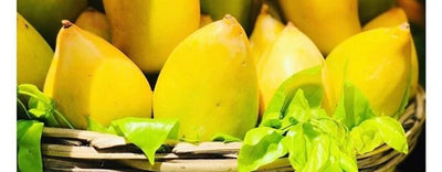 Can Eating Mango Really Increase Your High? - Discover the truth in 2019!