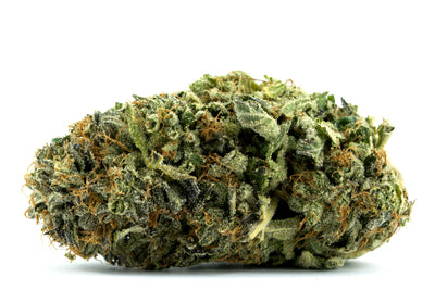 Pink Kush Strain Review - Everything You Need to Know & More!