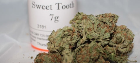 Sweet Tooth Strain Review - Everything You Need to Know & More!