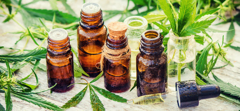 What Exactly is THC Oil & Will it Get You High? 16 Facts You Need to Know!