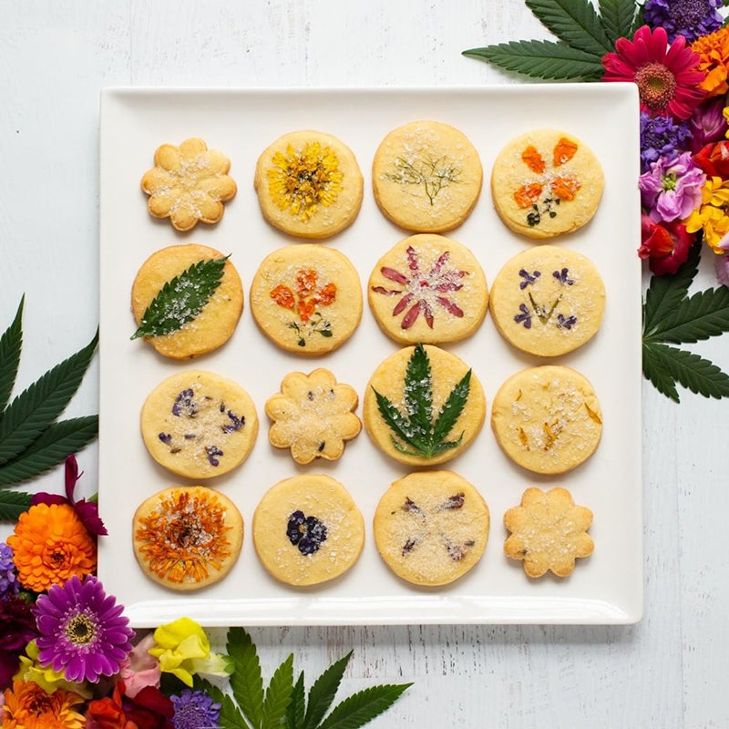 Edibles cookies, image from Curaleaf USA on Instagram