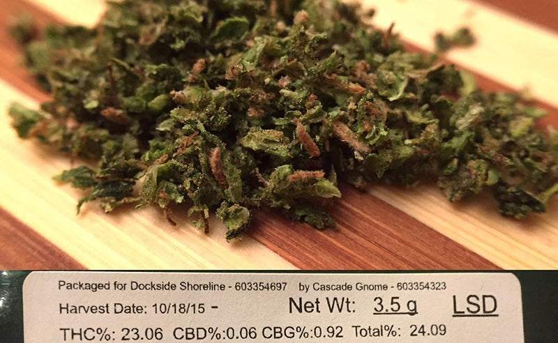 LSD Cannabis Strain (Everything You Need to Know & More