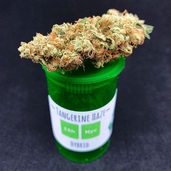 (Tangerine Haze bud, image from Welcome Gnome 207 on Instagram)