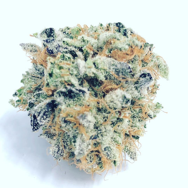 Cali Gold Strain & Extract - Everything you need to know