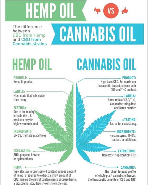 cannabis hemp oil marijuana