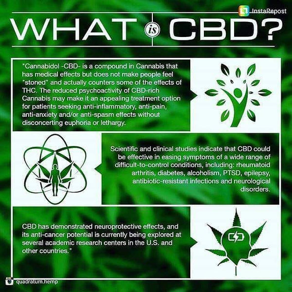 cbd information cannabis