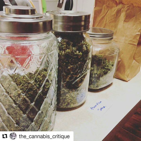 cure cannabis weed jar