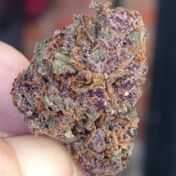forbidden fruit strain marijuana
