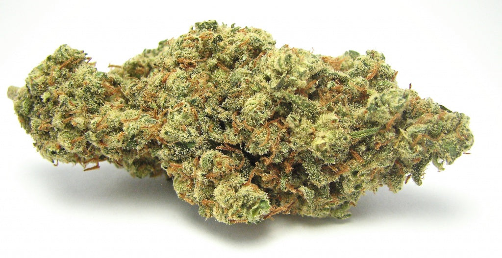 A single nug or bud of Jack Herer marijuana from Greenstate.com