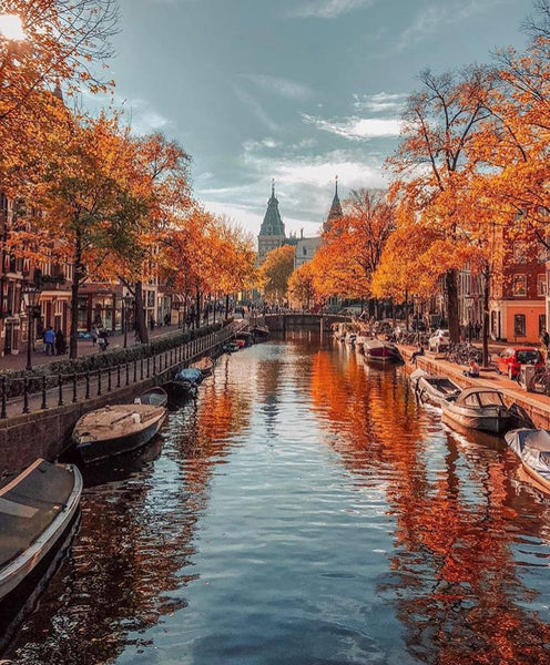 weed amsterdam fall smoke travel