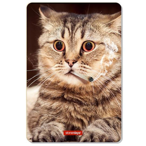 dab accessories High Kitty Dab Mat