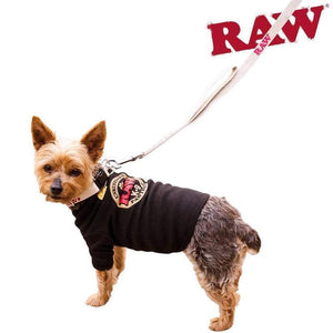RAW Hemp Dog Leash