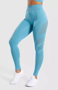 Ultra Stretch High Waisted Legging