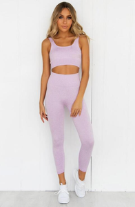 Push up two piece seamless set