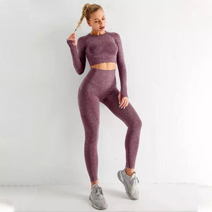 Seamless 2 Piece yoga set - Dcoup.com