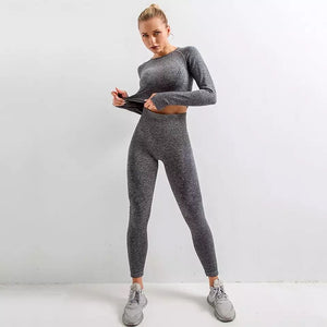 Seamless 2 Piece yoga Set