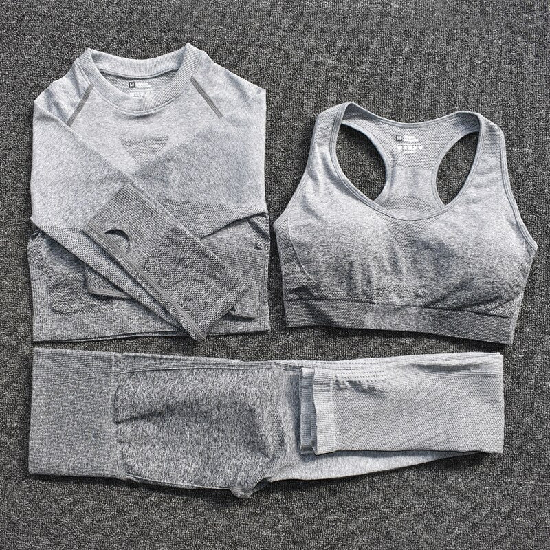 3 Piece Seamless Workout Set