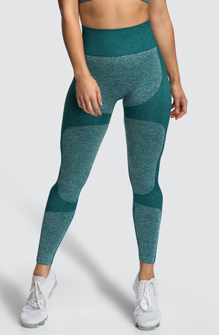 Seamless High Waisted Workout Leggings - Dcoup.com