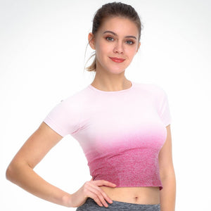 Seamless Short Sleeve Sport Crop Top - mydiscount-lk