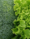 The Benefits of Eating Cruciferous Vegetables