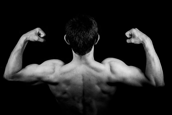 3 Reasons Why It's Beneficial to Maintain Muscle Mass