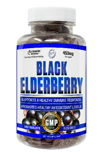 Black Elderberry 120 tablets