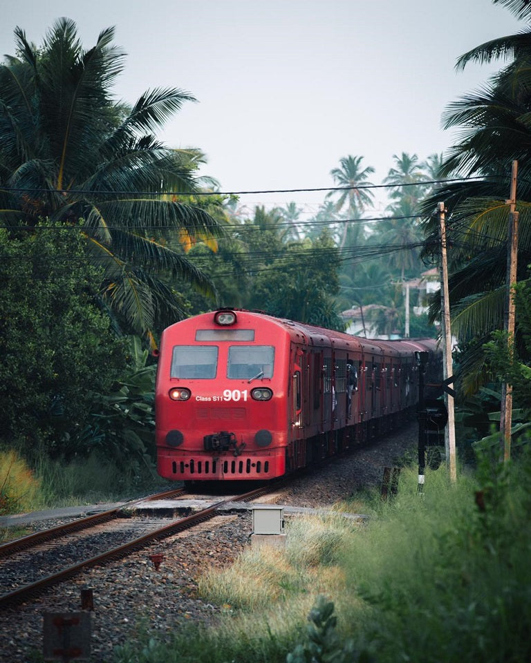 Dalawella Train Tracks, Sri Lanka