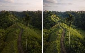 Before and after of @jordhammond Lightroom Tropical Preset - Campuhan Ridge Walk from above at sunset, Bali, Indonesia.