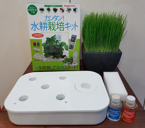 HOME HYPONICA Cultivation Kit
