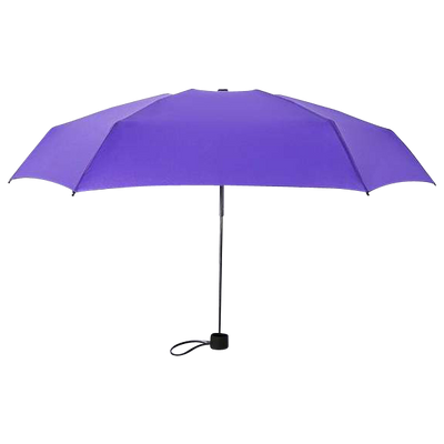 Portable Umbrella - Purple