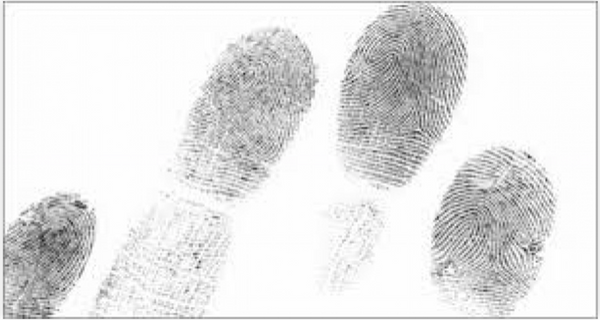 Fingerprints, Friends and Faking It: Why It's Time to Take a Closer Look at All Three