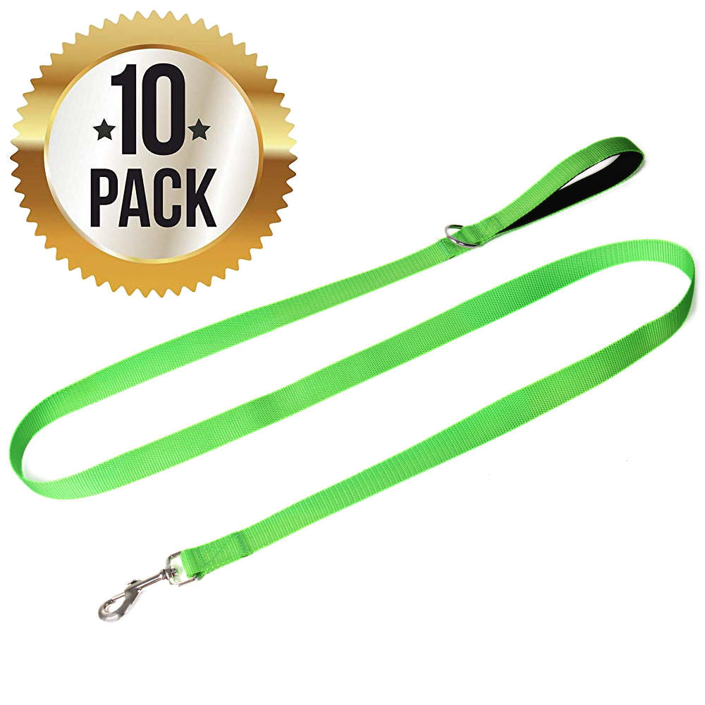 4 Foot Nylon Dog Leash with Padded Handle