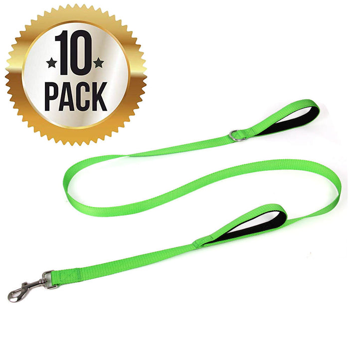 6 Foot Double Handle Nylon Dog Leash with Padded Handle