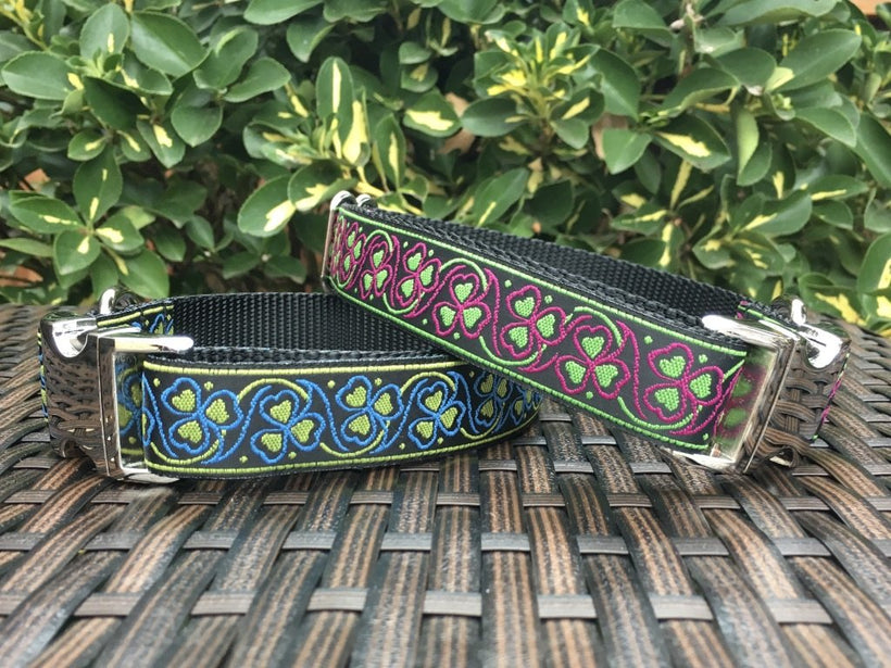 Buckle Dog Collars