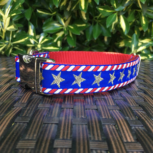 Stars and Stripes Dog Collar