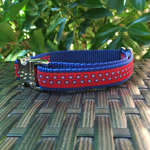 The Patriot Dog Collar
