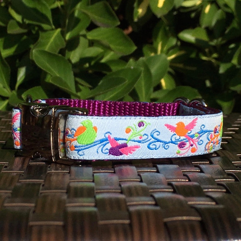 Song Birds Dog Collar - Hound Lines