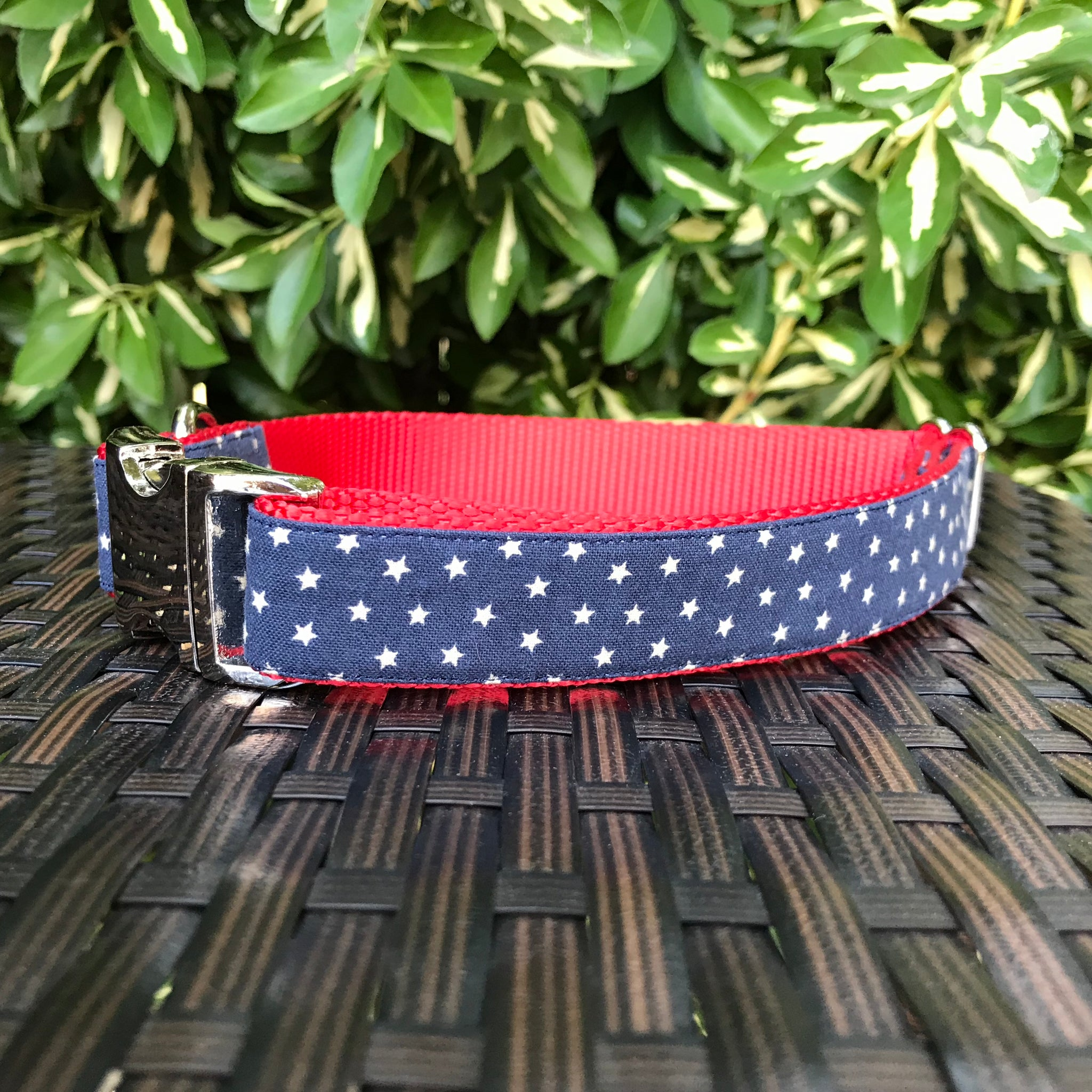 Stars Dog Collar - Hound Lines