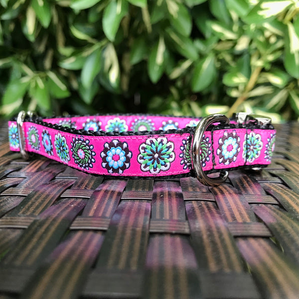 Flower Bursts Dog Collar