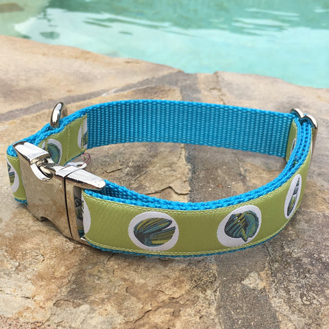 Green by the Sea Dog Collar