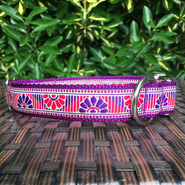 Fan Fair Dog Collar - Hound Lines