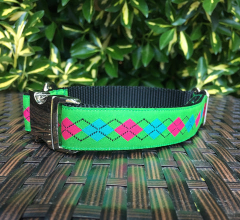 The Collegiate Dog Collar
