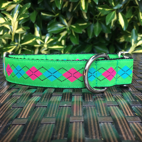 The Collegiate Dog Collar - Hound Lines