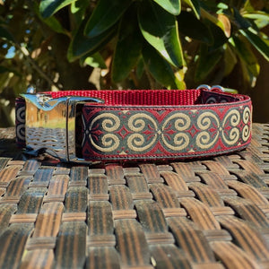 Swirls in Tan Dog Collar