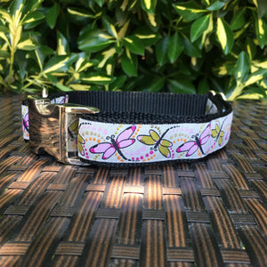 Dragonflies Dog Collar - Hound Lines
