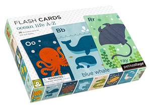 Ocean Flash Cards