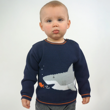 Load image into Gallery viewer, Shark Sweater