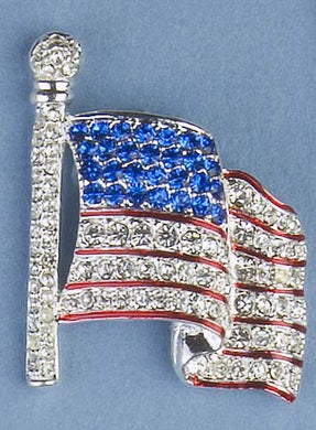 Waving Flag pin - silver